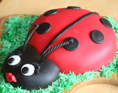 Tremendous Lady Bug Cake Funny Birthday Cards Online Overcheapnameinfo