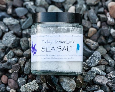 Sea Salt for Salted Caramel Chocolate Tart