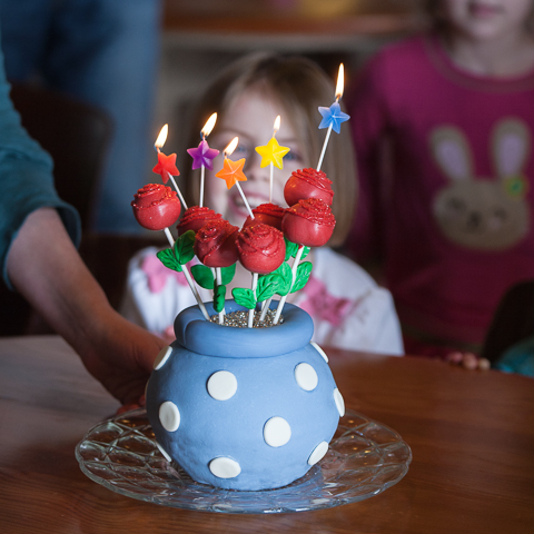 Rose Cake Pops in Vase Cake
