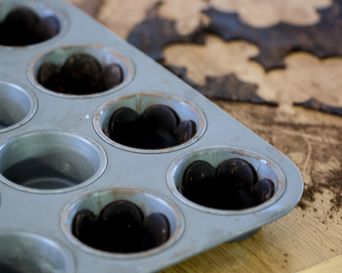Chocolate Cookie Tart Shells