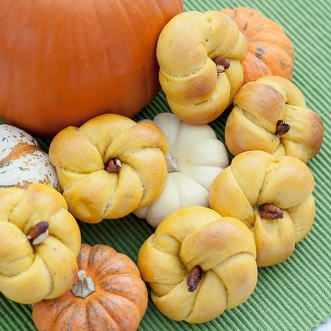 Pumpkin Dinner Rolls | flourarrangements.org