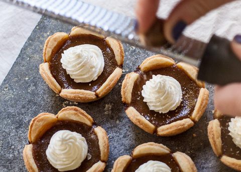 Mini Pumpkin Pies | flourarrangements.org