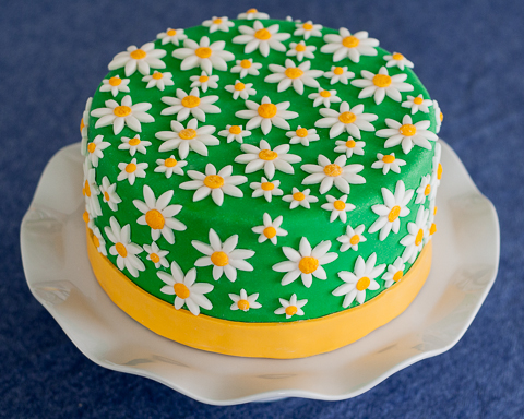 Cake Decorating How To Make Daisies : Daisy Cake