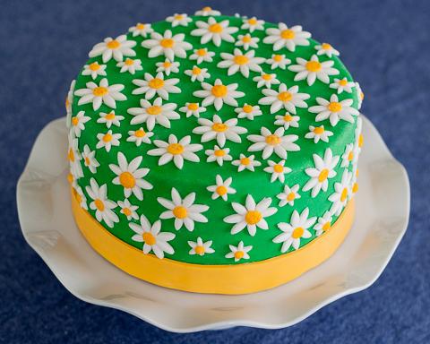 Super Daisy Cake Funny Birthday Cards Online Elaedamsfinfo