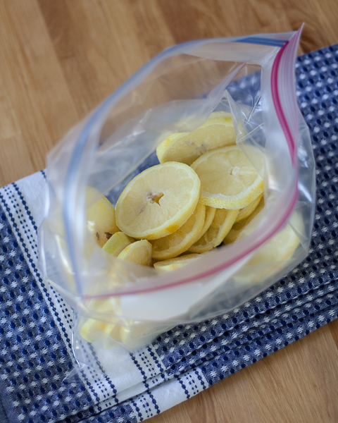 Frozen Lemon Slices | Flour Arrangements